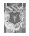 logo Comune di Pioraco